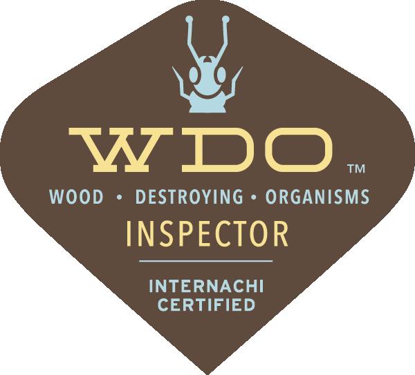 WDI Termite Inspection Austin