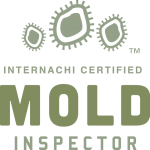 Austin mold inspection near me