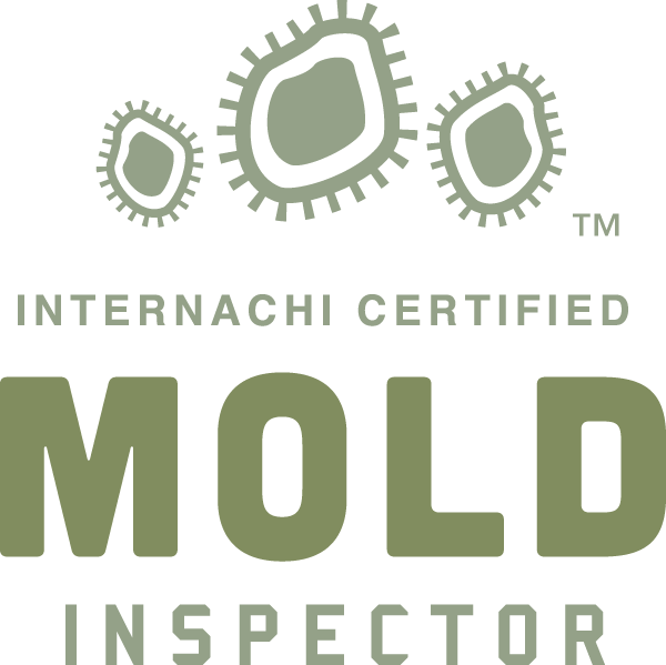 Austin mold inspection near me