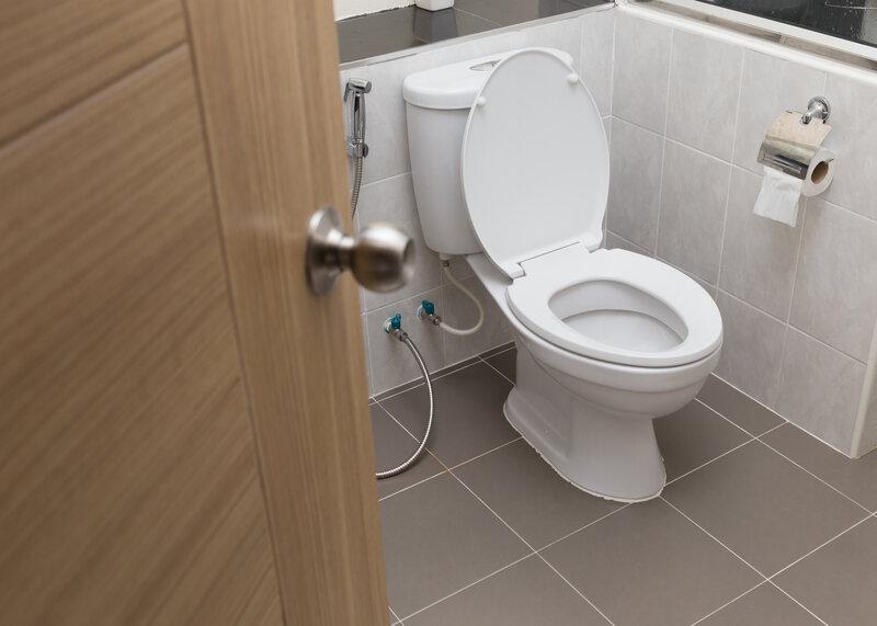 Toilet Inspection Austin